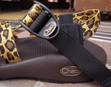 Chaco Z1&Z2 CLASSIC